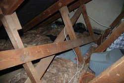 Neighbourhood storage: Attic Space, Erith, Greater London, DA8